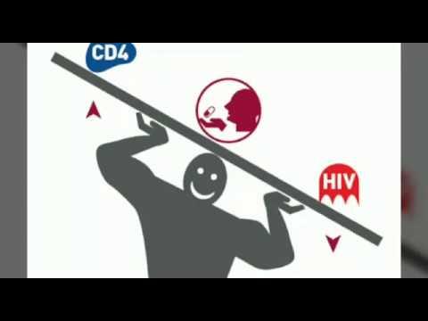 Zitokiny bei atopitscheskom die Hautentzündung