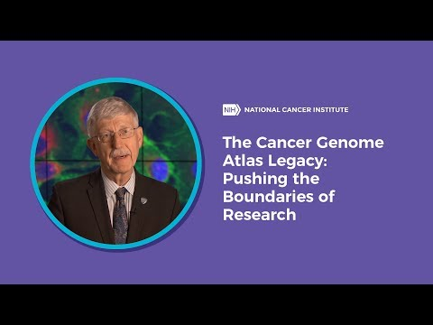 The Cancer Genome Atlas Legacy: Pushing the Boundaries of Research
