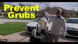 Get Rid of Grubs in Your Lawn | Grub Prevention Strategy