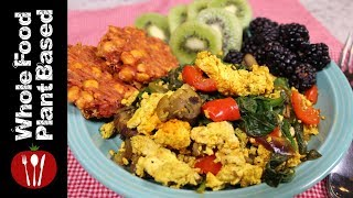 High Protein Plant Based Vegan Breakfast (2018) Whole Food Plant Based Recipes