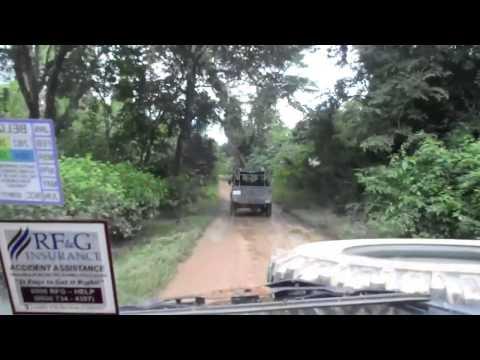 Driving in Belize (Royal Caribbean)