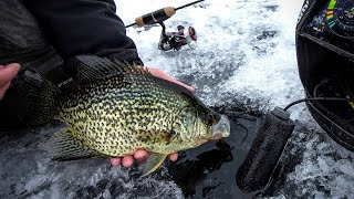 Late Ice Crappie & Bluegill Fishing