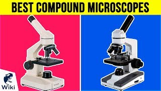 10 Best Compound Microscopes 2018