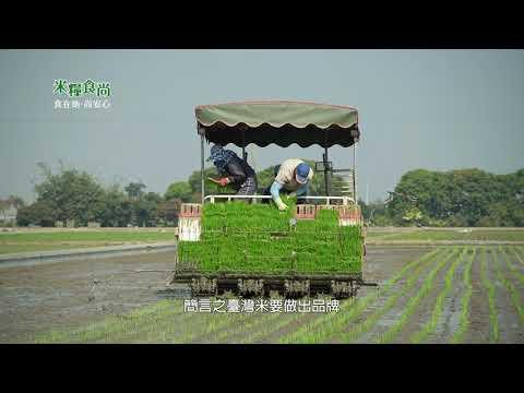 米糧食尚03 台南芳榮米廠
