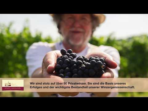 Die Odenwälder Winzergenossenschaft - vinum autmundis