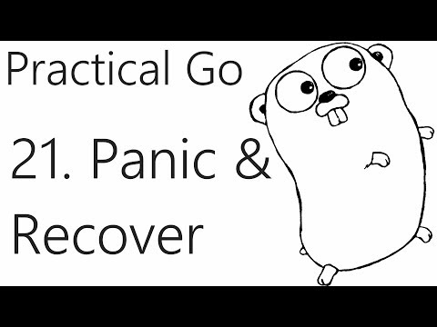 Panic and Recover – Go Lang Practical  Programming Tutorial p.21