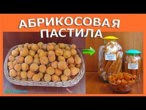 Абрикосовая пастила с мёдом в сушилке Ezidri