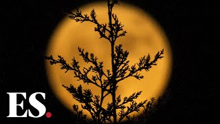 Supermoon 2020: What is a supermoon and does it affect us?