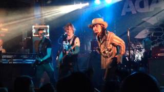 Adam Ant - Animals and Men - Concorde2 Brighton 8/4/15