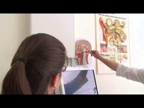 Dzieci Pediatrics atopowe zapalenie skóry