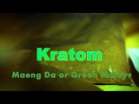 Mi a Kratom tea és biztonságos?
