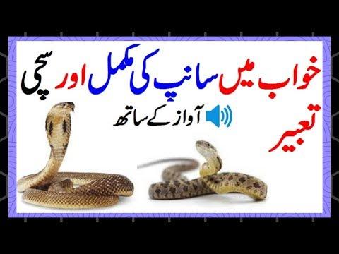 khwab mein saanp dekhna in urdu || khwab mein saanp dekhna
