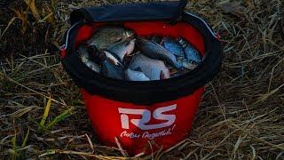 Рыбалка на реке сож гомельская областье