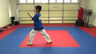 Taekwondo Poomsae 1 - 8 and Black Belt 1st - 9th dan