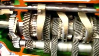 Video Mô hình động cơ diesel