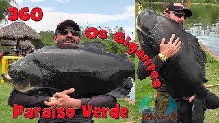 Programa Fishingtur na TV 360 - Clube de Pesca Paraíso Verde