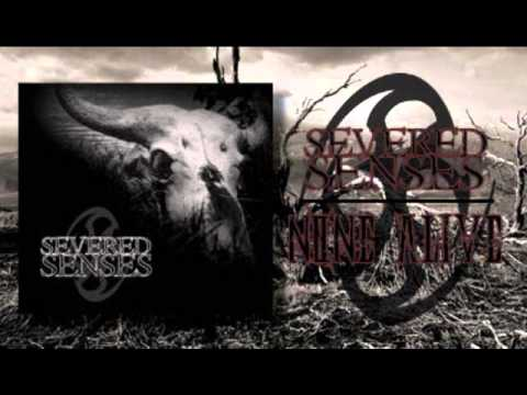 "Severed Senses ""None Alive"" demo"