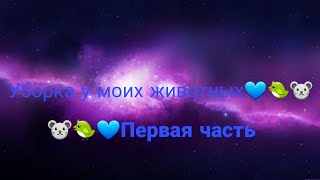 Уборка у моих животных💙/1часть/💙