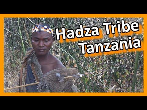 Tanzania - Lake Eyasi: Hadza tribe hunters & gatherers