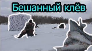 Рыбалка на реке иня зимняя