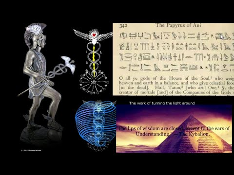 OCCULT ANATOMY of MAN / ESOTERIC Subtle Energy Body ?ADEPT