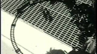 The Magnetic Fields - Born on a Train