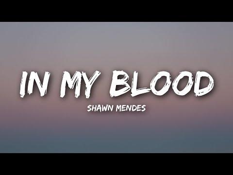 Shawn Mendes - In My Blood (Lyrics / Lyrics Video)