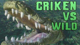 Far Cry 3: Criken vs Wild