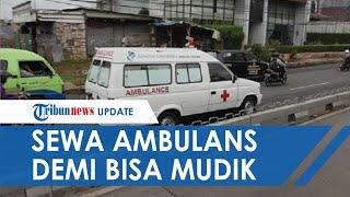 Nekat Sewa Mobil Ambulans demi Bisa Mudik ke Jember, Ibu dan Anak Ini Mengaku Sakit Tifus