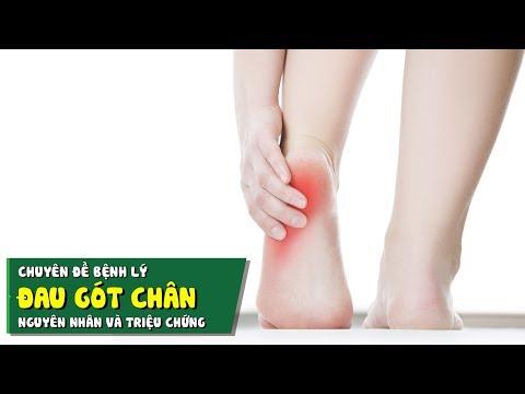 Chuyên đề bệnh lý - Đau gót chân - Nguyên nhân và triệu chứng