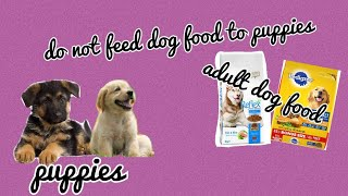 Why we should not feed adult dog food to puppies.