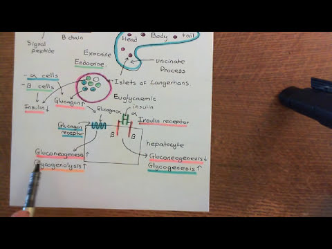 Erhebung von Gebühren für Patienten mit Hypertonie und Diabetes
