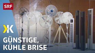 Ventilatoren im Test: Viel Wind für wenig Geld | 2020 | SRF Kassensturz
