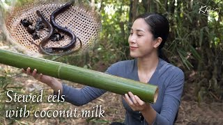 Trap eels with bamboo tube and make a delicious dish: Stewed eels with creek premna, coconut milk