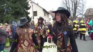 preview picture of video 'Fasnachtsumzug Hagenbach Kreis Germersheim Germany 17.2.2015 T14'