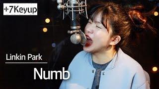 (+7 Key Up) Numb - Linkin Park Cover | Bubble Dia