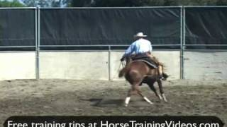 Cutting Horse Training Problems, 3-year-old, Part 2