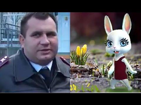 боров ушКОНЬ из гаи  vs  Zoobe зайка , Ленинградская , лычки ушканя