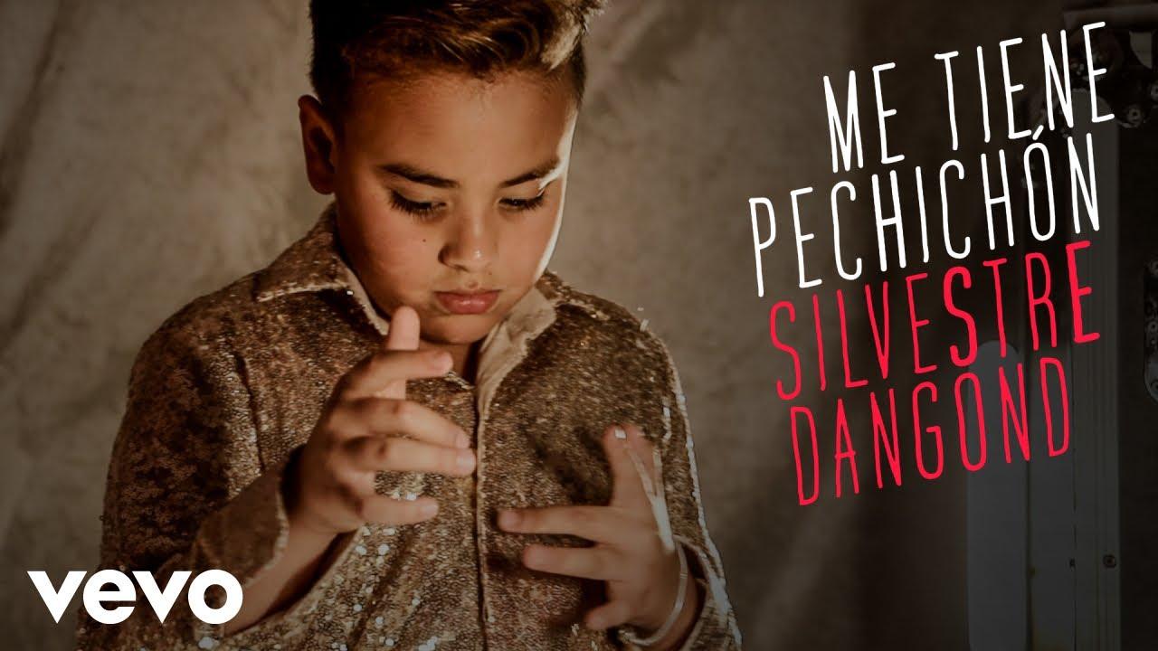 Silvestre Dangond - Me Tiene Pechichón