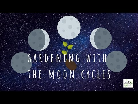 , title : 'GARDENING WITH THE MOON CYCLES | Adventures Across