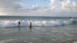 Swimming in 12 foot waves - Waimea Bay, Hawaii