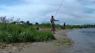 Рыбалка в васильсурске на фидер