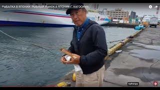 Все о рыбной ловле в японии