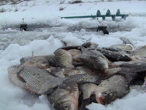 Рыбалка: видео смотреть онлайн