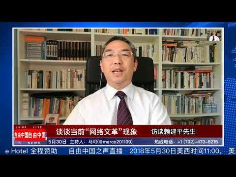 """自由中国之声:马可、赖建平谈""""网络文革""""现象"""