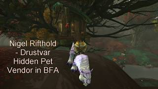 Nigel Rifthold - Drustvar Hidden Pet Vendor in BFA