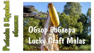 Воблер lucky craft malas 0019 lime chart 696
