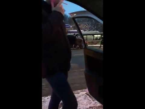 ГИБДД Владимирской области для задержания нарушителя использовала живой щит