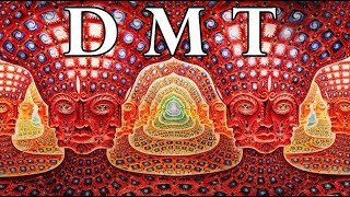 Download Video DMT: Portal to the Spirit World MP3 3GP MP4
