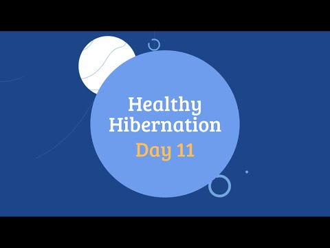 Healthy Hibernation Cover Image Day 11.